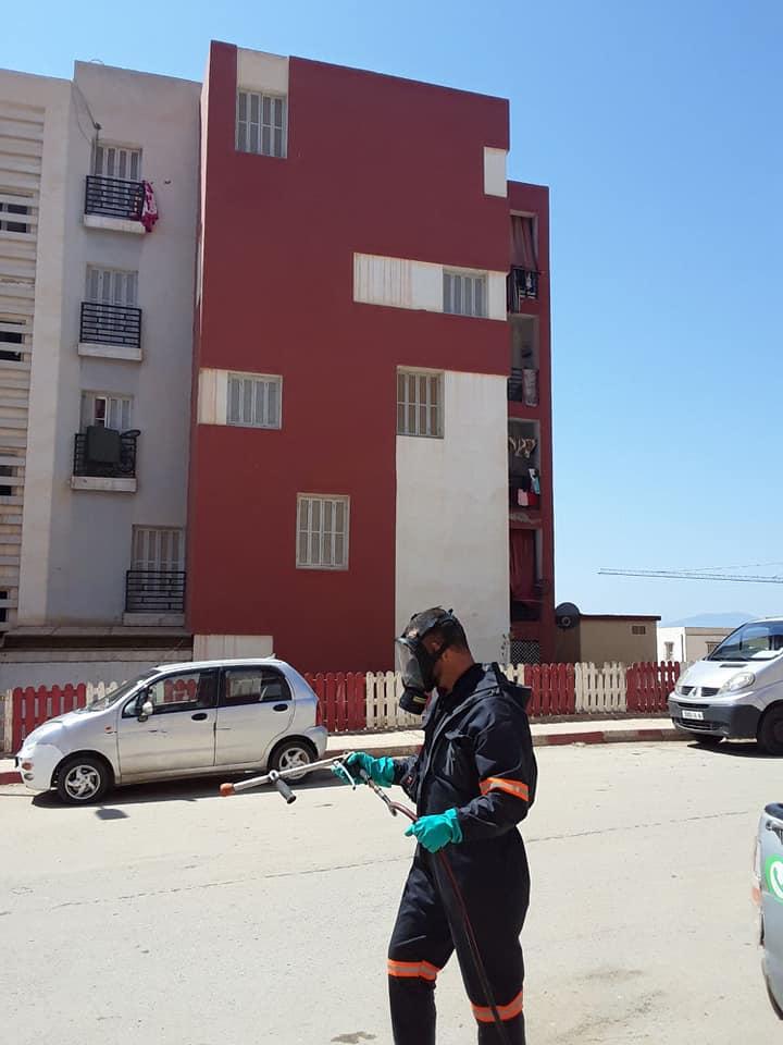 تتواصل عمليات التعقيم ليومها الثاني   بعد عملية النحر في المقاطعة الادارية لسيدي عبد الله